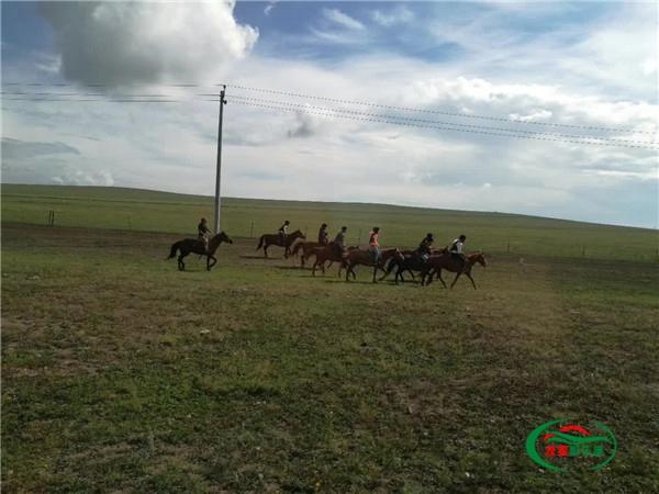呼伦贝尔大草原旅游包车价格_口碑公司-草原旅游包车