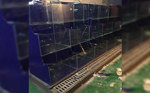 亳州酒店海鲜池价格-行业设备社区