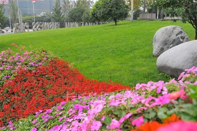 杭州绿化工花卉工证相关政策和报
