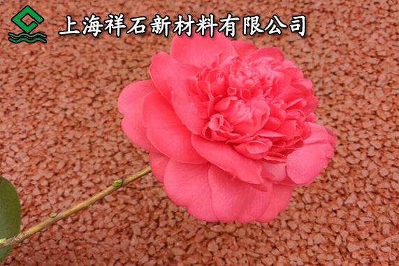 http://www.chnbk.com/changningxinwen/14290.html