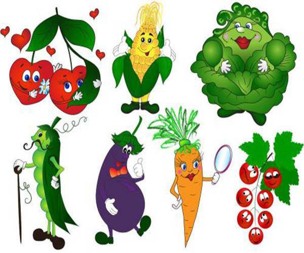东莞长安镇食堂蔬菜配送绿色食材