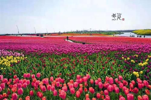 http://www.nthuaimage.com/nantongjingji/58556.html