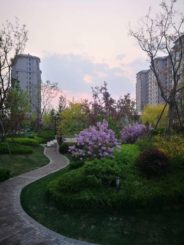 北京市优惠的丽都华府楼盘价格-鹏润置地